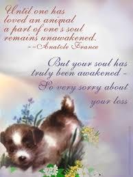 sympathy cards for pets printable sympathy cards for pets pet sympathy cards
