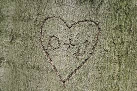 initials carved in tree heart shape with initials carved into tree stock photo image