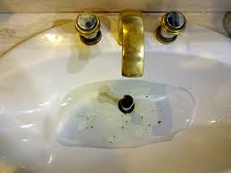 clogged sink a clogged sink has many causes many are avoidable