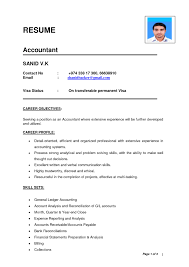 Standard Resume Format Sample by Standard Resume Format For Accountant Resume For Your Job