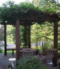 wisteria takes over pergola u2013 the home tome