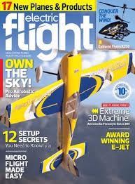 Park Flyers Backyard Flyers by Electric Flight Print Digital Print Digital Subscriptions