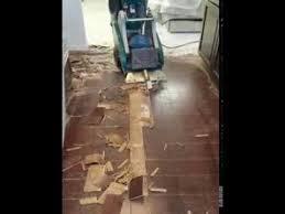the bull walk floor scraper taking up hardwood