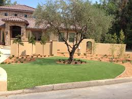 san francisco u0026 bay area artificial grass synthetic turf