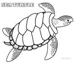 sea turtle coloring pages intended for your house cool coloring