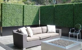 magnificent privacy screen options for your backyard