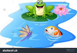 cute green frog cartoon on lily stock vector 426309709 shutterstock