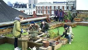 urban vegetable gardening ideas garden design plans u2013 home gardens