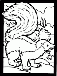 printable pictures of skunk free printable skunk coloring pages