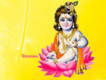 Wallpapers Backgrounds - Wallpapers God Krishna Pictures 1024x768 433882