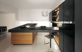 Kitchen Cabinet Modern Modern Kitchen Cabinet Design Alluring Decor Yoadvice