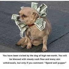 High Dog Meme - boof meme tumblr