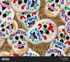 day dead sugar skull image photo bigstock
