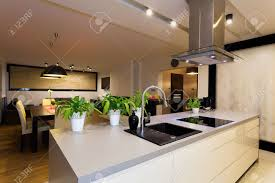 Kitchen Counter by Urban Apartment White Kitchen Counter With Plants Stock Photo
