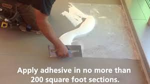 Free Flooring Installation Pvc Free Flooring Installation