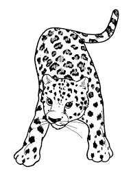 Coloriage bebe leopard  Animaux de la jungle