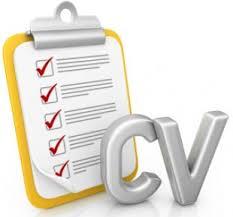 cv search rpo leaders cv search