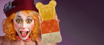 world u0027s largest gummi bears and giant gummy bears the original