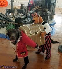 Treasure Chest Halloween Costume Dog Pirate Carrying Treasure Chest Diy Costume Dogs Photo 3 3