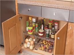 Storage Ideas For Kitchen Kitchen Cabinet Storage Ideas Theringojets Storage
