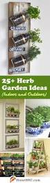 the 25 best balcony herb gardens ideas on pinterest patio herb