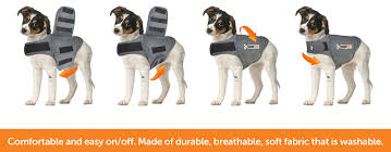 amazon com thundershirt dog anxiety jacket heather gray large