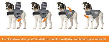 amazon com thundershirt dog anxiety jacket heather gray large