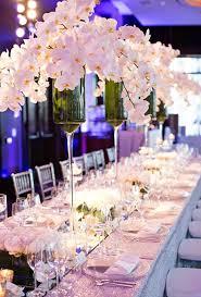 Orchid Centerpieces Best 25 Blue Orchid Centerpieces Ideas On Pinterest Blue Purple