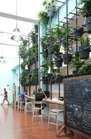 office design interior office plants boston best 25 office