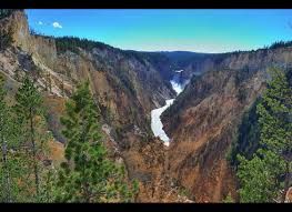 yellowstone national park hit by magnitude 4 8 earthquake huffpost