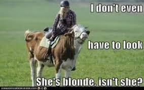 Funny Blonde Memes - blonde memes kappit