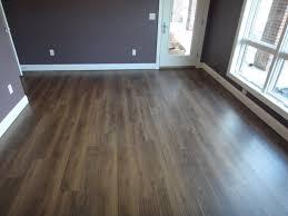 best vinyl floor cleaner dimensions