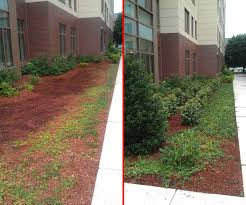 commercial landscaping before and after articlespagemachinecom