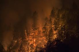 Willow Wildfire California by Interactive Fire Maps Mandatory Evacuations In Sonoma Valley