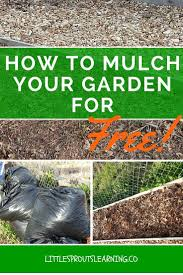 Mulching Vegetable Garden by 4867 Best Garden Ideas To Remember Images On Pinterest Gardening