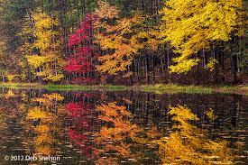 New Jersey scenery images Autumn splendor deb snelson photography fine art jpg