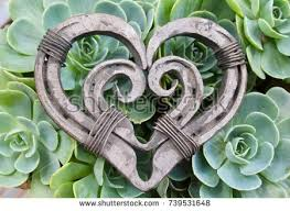 heart shaped horseshoes silver horseshoe stock images royalty free images vectors