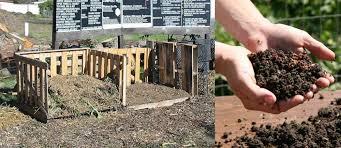 Backyard Composter Backyard Composting City Of Davis Ca