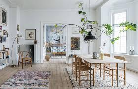 oversized house plants large indoor plants