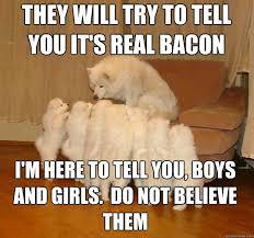 Dog Bacon Meme - image 512111 storytelling dog know your meme