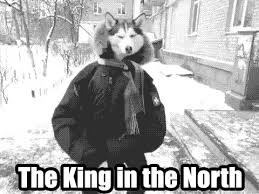 King Of The North Meme - i am king of the north meme am best of the funny meme