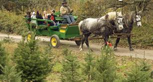 part 1 holidays on the farm trails nov 18 nov 26