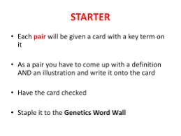 multiple alleles worksheet