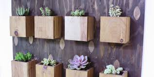 succulent kits plant vertical gardens amazing wall garden planters here is an