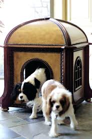 Elevated Dog Beds For Large Dogs Beds Pet Beds Walmart Best For Large Dogs Amazon Indoor Dog