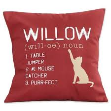 Pillows At Bed Bath And Beyond Buy Cat Pillow From Bed Bath U0026 Beyond