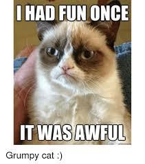 Grumpy Cat Meme I Had Fun Once - had fun once it was awful grumpy cat meme on me me