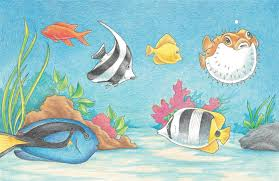tropical fish learn to draw pets book