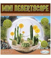 glass terrarium mini desert scape joann