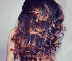 hair frosting for dark hair honey frosted tips on dark brown hair what a stunning mane